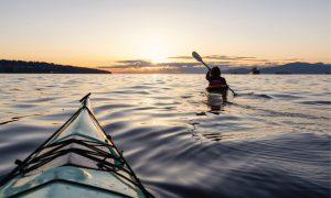Mangrove-Kayaking-qatar