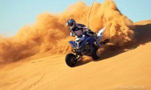 desert-quad-driving-qexplorer