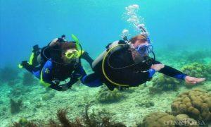 scuba-diving-qexplorer